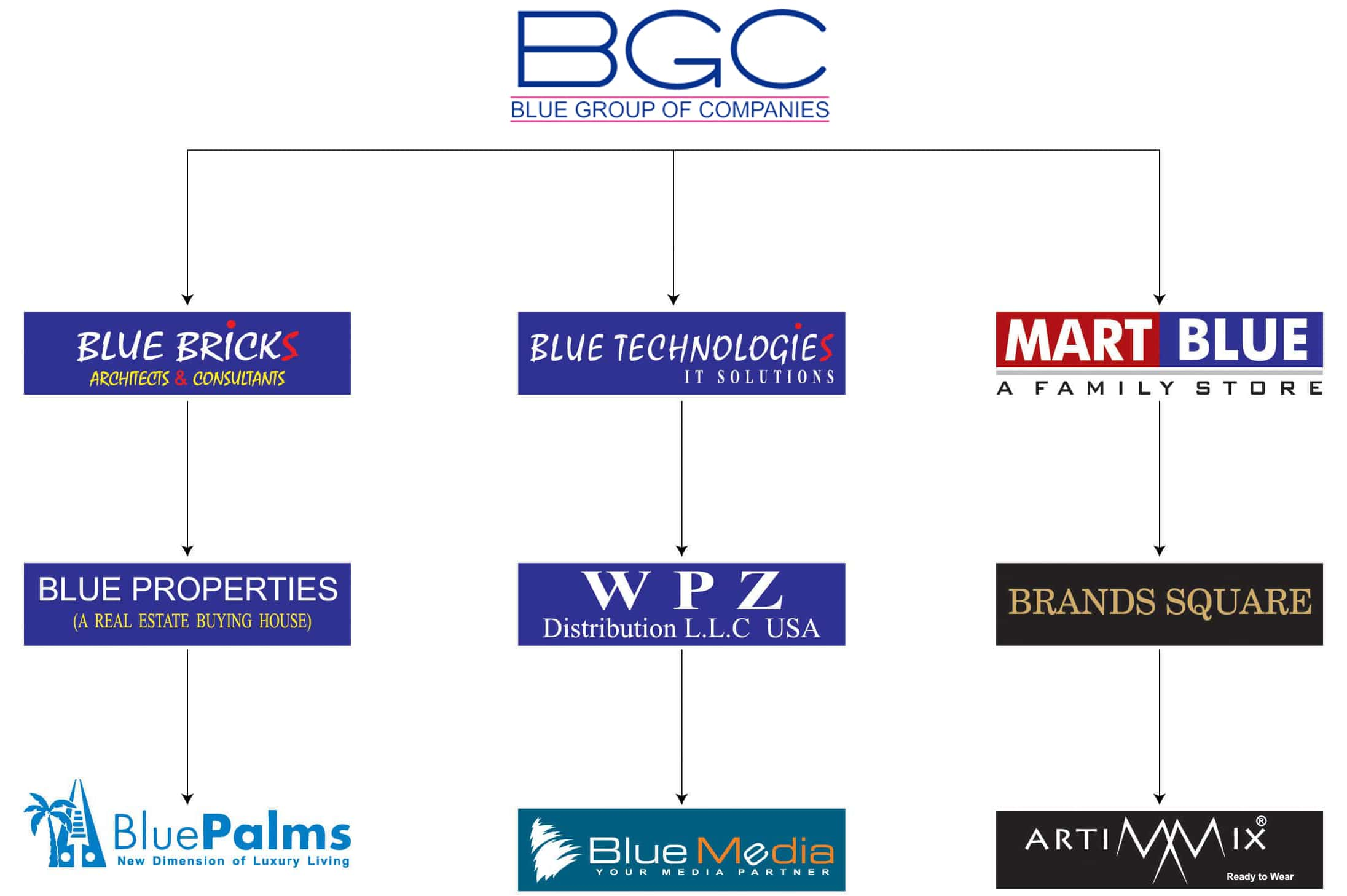 Company structure blue group of companies bgc company structure min min altavistaventures Image collections